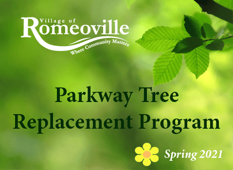 Parkway Tree Program